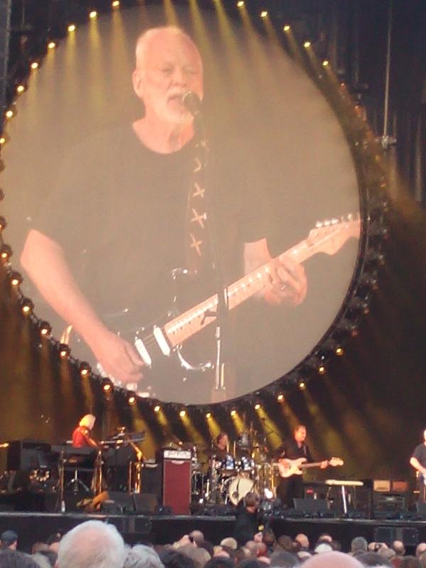 Gilmour-stutt-2