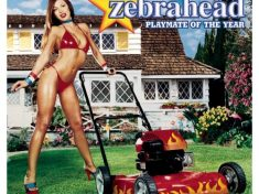 zebrahead_-_playmate_of_the_year
