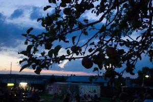 Picture On Festival Bildein